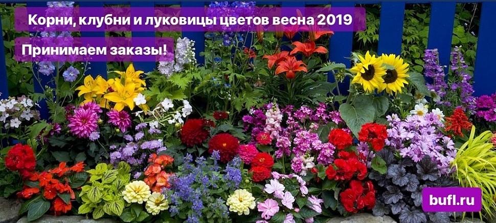 Каталог весна 2019